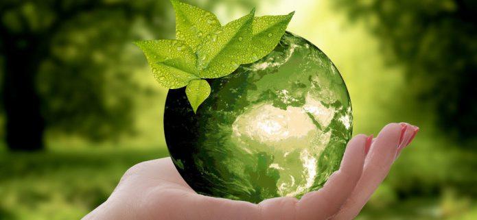 Ograniczenie odpadów w domu - filozofia zero waste